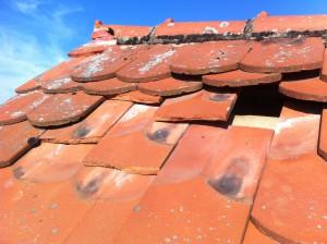 sturmschaden dach reparieren